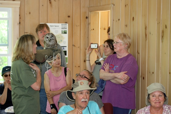 Vivian Maxson from the Born to be Wild Nature Center with a barred owl.
