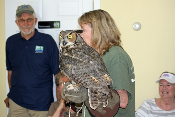 Vivian Maxson from the Born to be Wild Nature Center with a great horned owl.